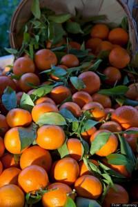 oranges-6-200x300